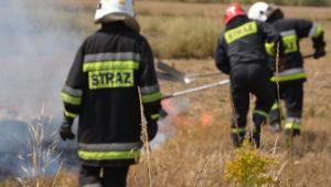 Apel Komendy Powiatowej Państwowej Straży Pożarnej w Wadowicach o zaniechanie szkodliwego wypalania traw