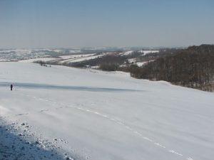 zim12d