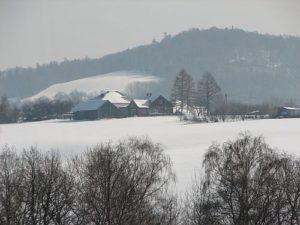 zim18d