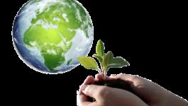 Program Ochrony Środowiska dla Gminy Tomice na lata 2019-2022